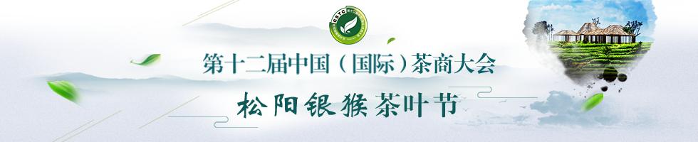 第十二届中国(国际)金沙城商大会·松阳银猴金沙城叶节