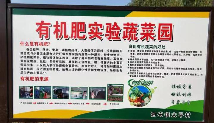 Pollution-free vegetable demonstration garden at Changxing