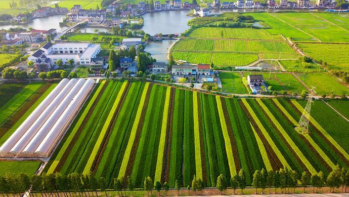 Yangtze River Delta focuses on ecologically friendly development_In Zhejiang