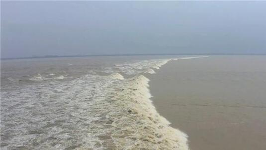 Qiantang River tidal bore reached the highest level