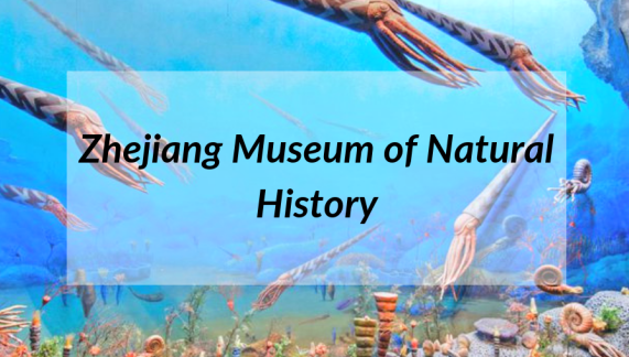 Museums in Zhejiang: Zhejiang Museum of Natural History