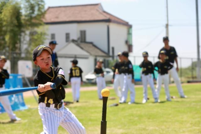 平湖小村莊迎來棒球賽