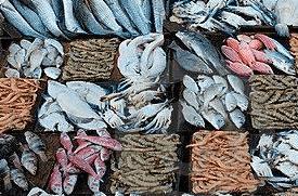 湖北黃岡某海鮮市場疑似檢出新冠病毒?