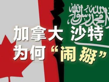 沙特和加拿大打起了口水戰 兩個八竿子打不著的國家為何交惡