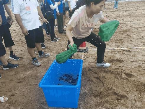 浙江省第三届海洋运动会海滩趣味四项比赛在三门举行