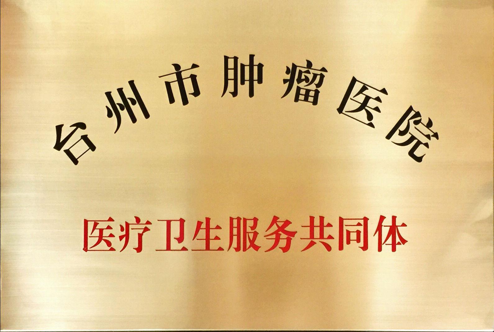 臺腫醫醫共體召開醫共體建設工作推進會