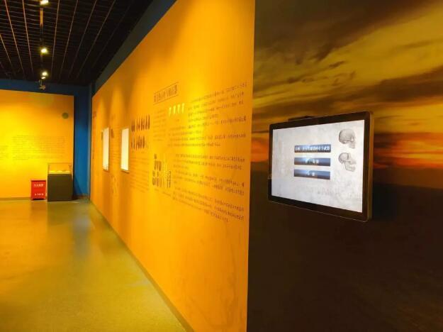 展览图2.jpg