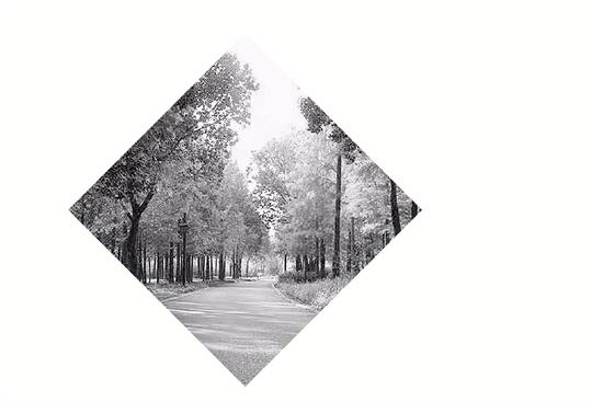 杭州西溪湿地又多一块免费开放区