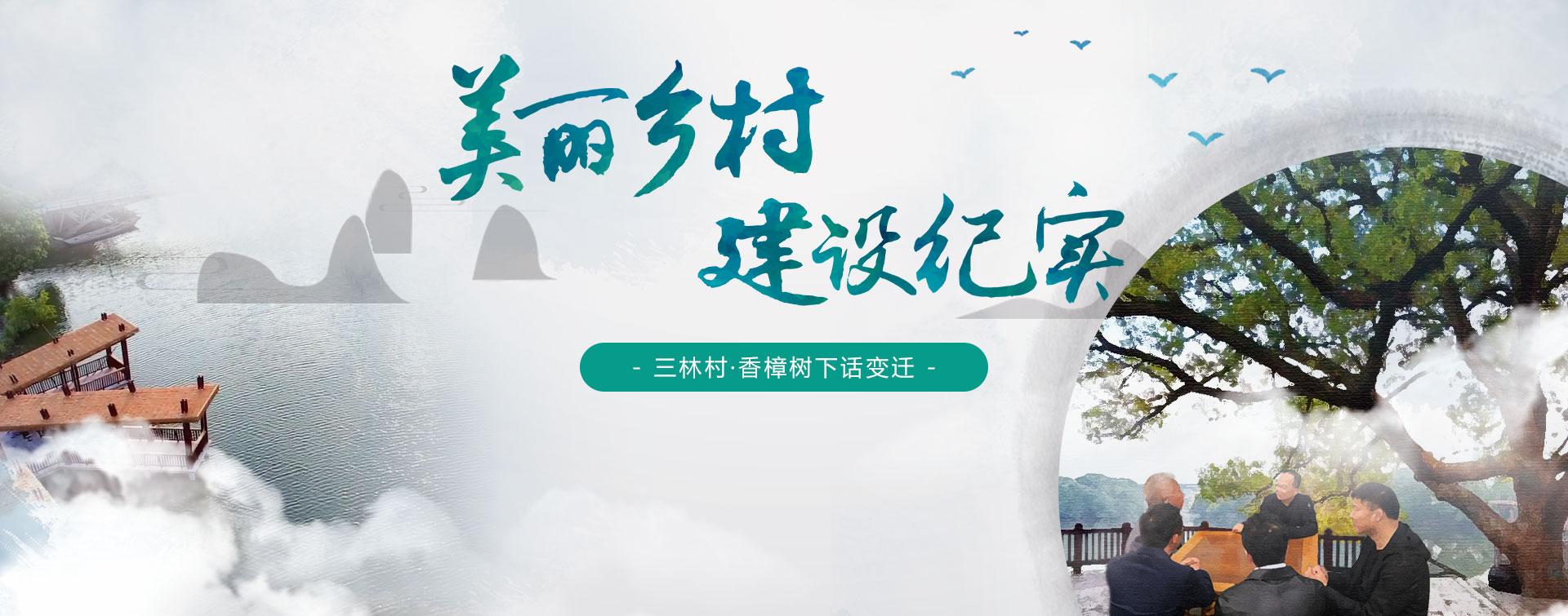 香樟樹下話變遷:三林村美麗鄉村建設紀實