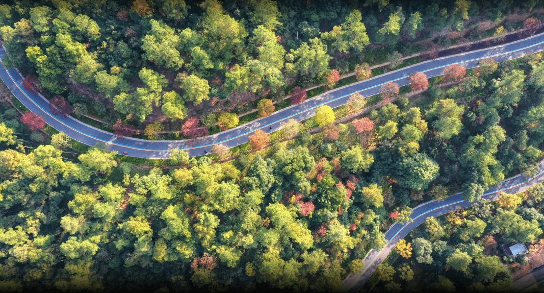 健康、幸福、包容……贯穿山川河海的浙江绿道带给你什么?