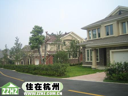 九月森林--浙江在线-住在杭州图片