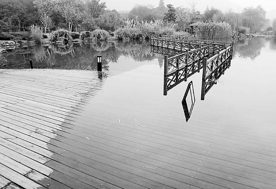 西湖里的水满出来了腺癌球部粘膜幽门图片