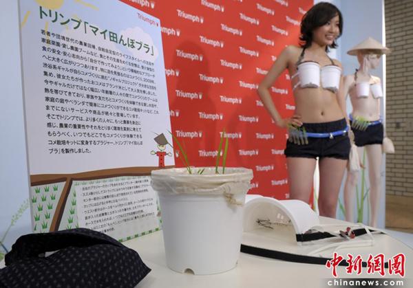 日本美女展示新款水稻内衣