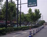 丽园项目周边道路