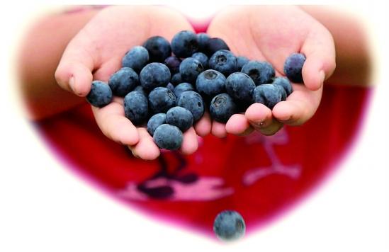 时下最IN 蓝莓一夏-蓝莓