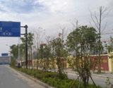 博奥城周边道路