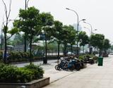 登云路为拱墅区的主要干道之一,车流繁忙