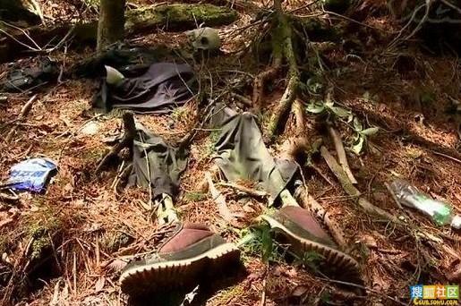 探秘日本恐怖的自杀森林 秋季是收尸的季节-