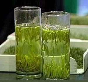 sperma-zeleniy-chay