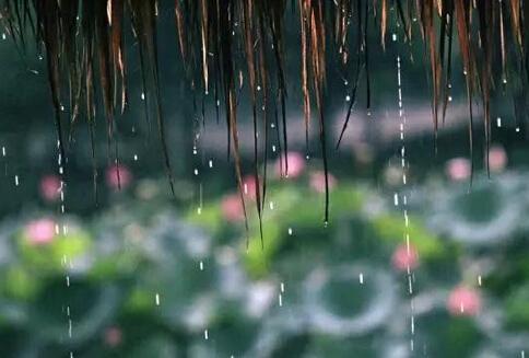 今年梅雨季为何姗姗来迟