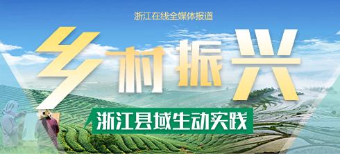 【专题】乡村振兴 浙江县域生动实践