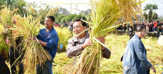建德:农旅融合重拾乡愁记忆