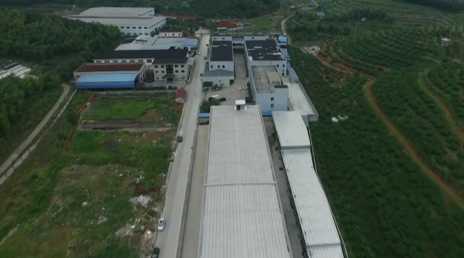 奉化:七家企业侵占大面积农用地违建厂房