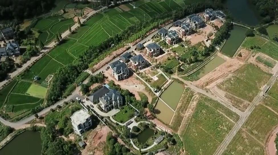 龙游:半爿月村占用林地新建别墅庭院