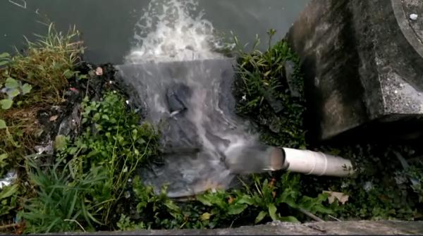 苍南:主城区入网污水溢流江湾河重现黑臭