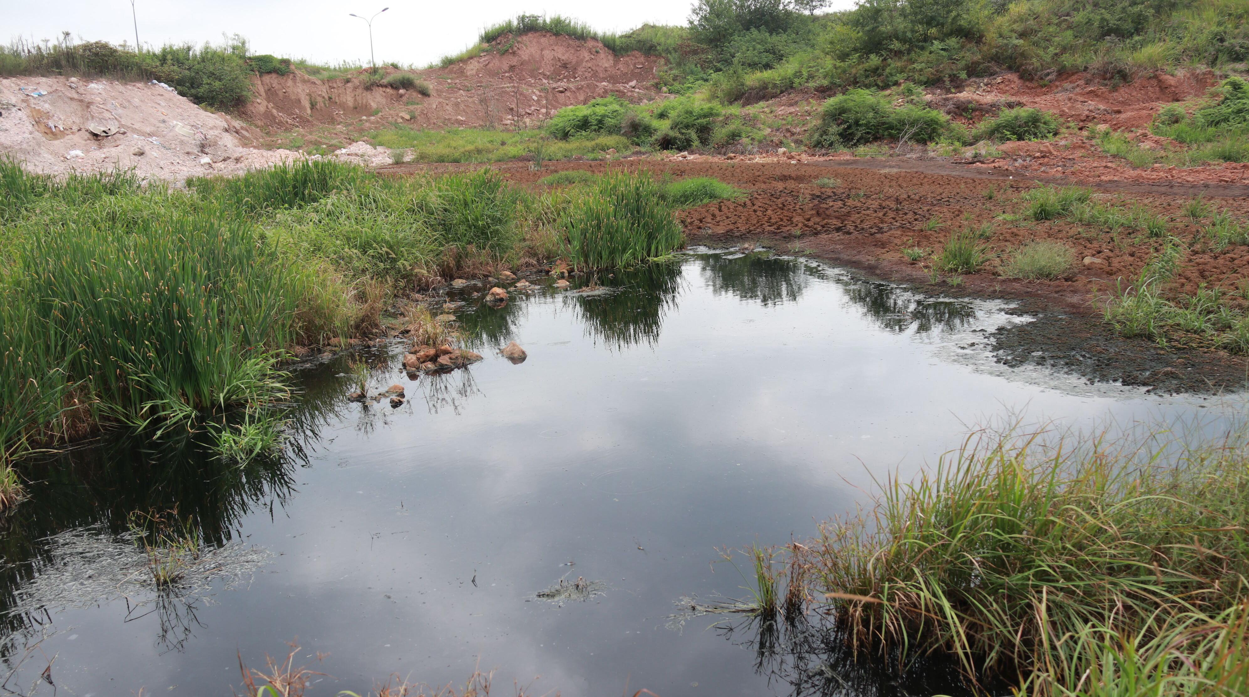 金东区一山坳偷倒大量工业污泥 当地回应:检测后进行处置