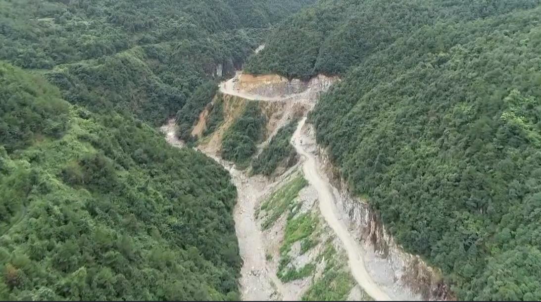 青田:郑坑下村公路改造项目毁坏省级公益林