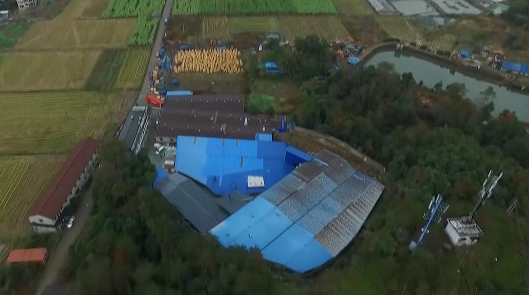 临海:一村干部违建企业超标排放污染物
