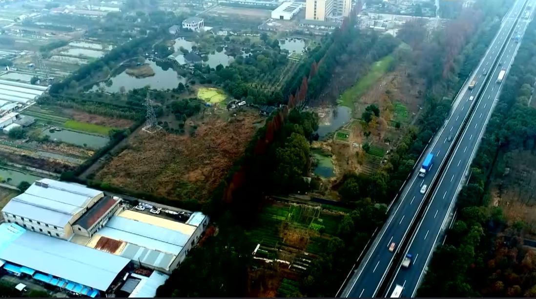 杭州西湖区:老沙社区主任侵占农用地违法建设