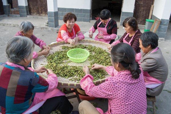 又到一年熏豆时 南浔村民忙开了