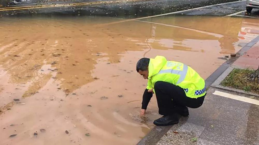 暖!暴雨过道路积水 交警帮忙捞落叶排水 网友:为他们鼓掌!