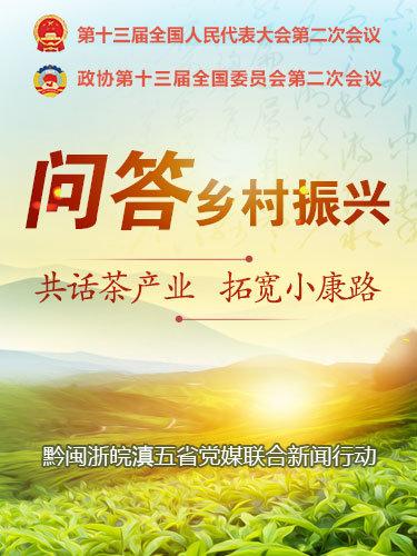 问答乡村振兴 共话茶产业 拓宽小康路