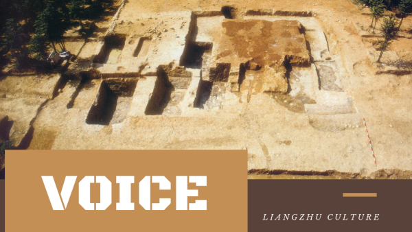 Voice: Influential Chinese experts on Liangzhu Ancient City