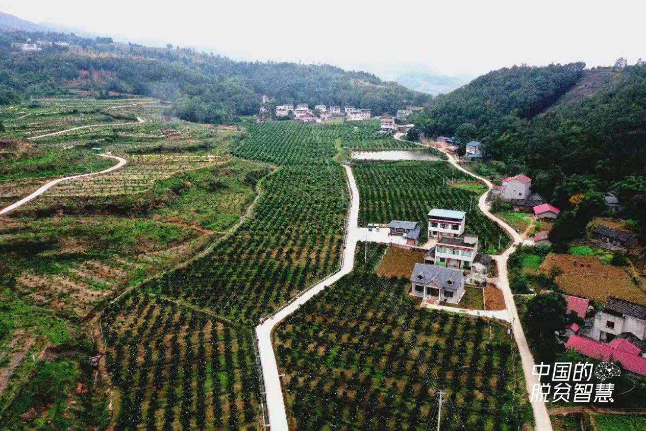 贵州省农村产业革命生态渔业产业专题报告会在贵阳举行