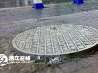 西溪路绿化带被淹