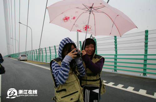 网媒聚焦杭州湾跨海大桥