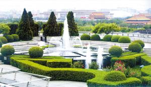 王艳家的私家花园,好似故宫的空中花园。里面种植着落叶灌木、松树、大片的月季和一些叫不出名字的花卉,花园中间,是连成一片的喷泉。