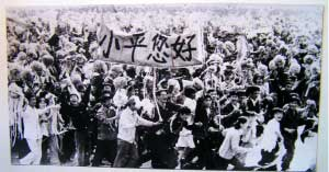 邓小平白猫黑猫论成为改革开放思想理论标志