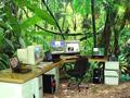 这才是最舒服的办公室