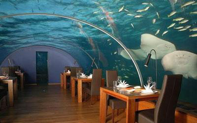 Ithaa是世界上第一家全玻璃的海底餐厅