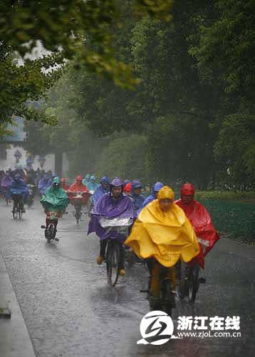 风雨同行-图片新闻