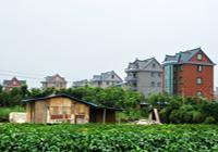 【摄影】美丽的新杭州