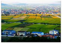 【摄影】新农村
