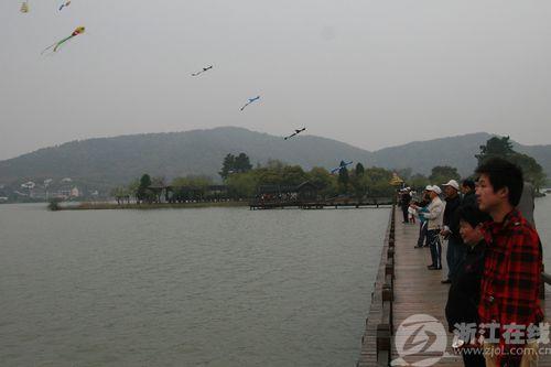 拥抱自然 放飞希望 在南北湖放风筝喽图片