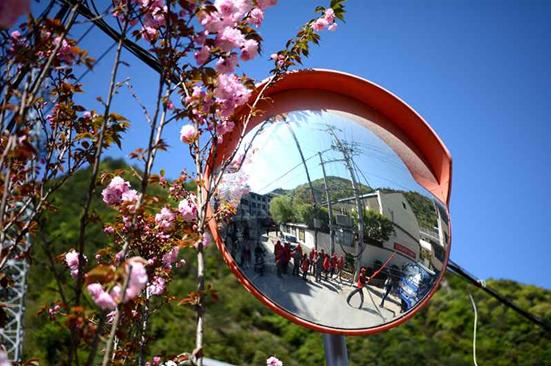 镜旁盛开的樱花为整治铁军们喝彩!
