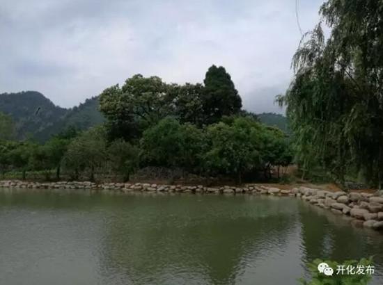 杨林镇东坑口村:臭水塘变成景观塘。